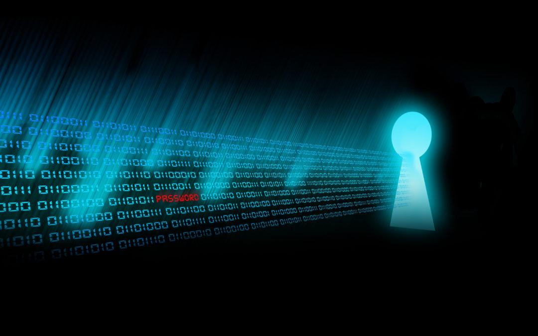 Seguimos actualizando los cursos de The Security Sentinel