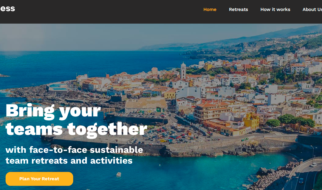Campaña SEM Remotefulness.com